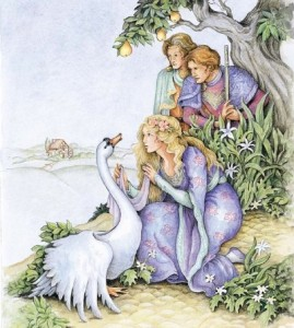the-wild-swans-story-9