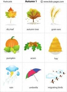 flashcards sull'autunno