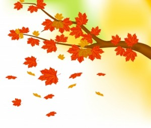 five_autumn_leaves