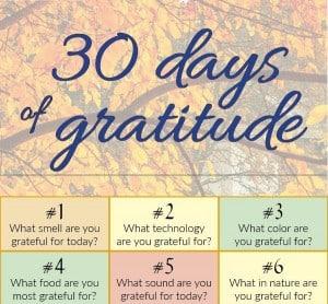 30-days-gratitude-infographic2