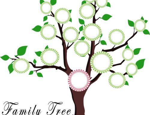 Family tree: bambini alla scoperta delle proprie origini