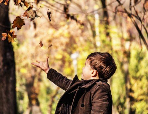 3 Libri in inglese da leggere in autunno