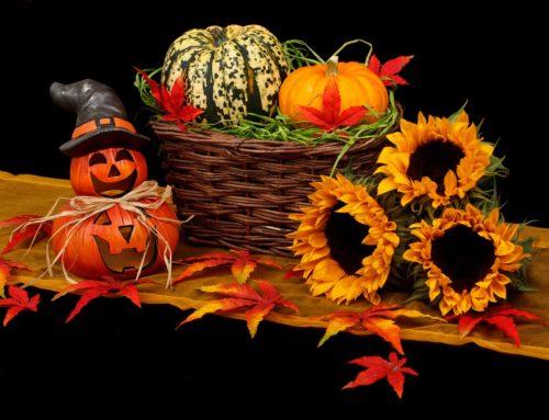 Testi e materiali per Halloween