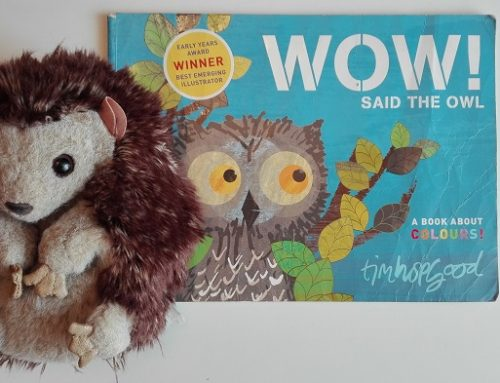 Wow! Said the owl – Libro sui colori