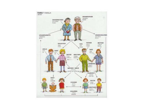 Nomi della famiglia: giochi per impararli