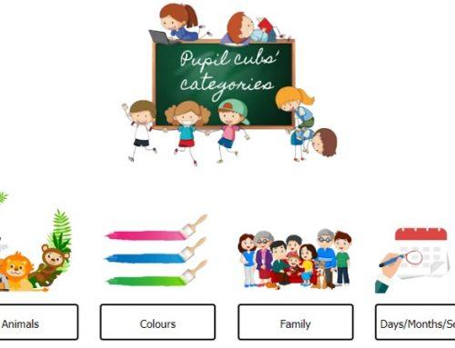 Esercizi e giochi online su Pupil Cubs